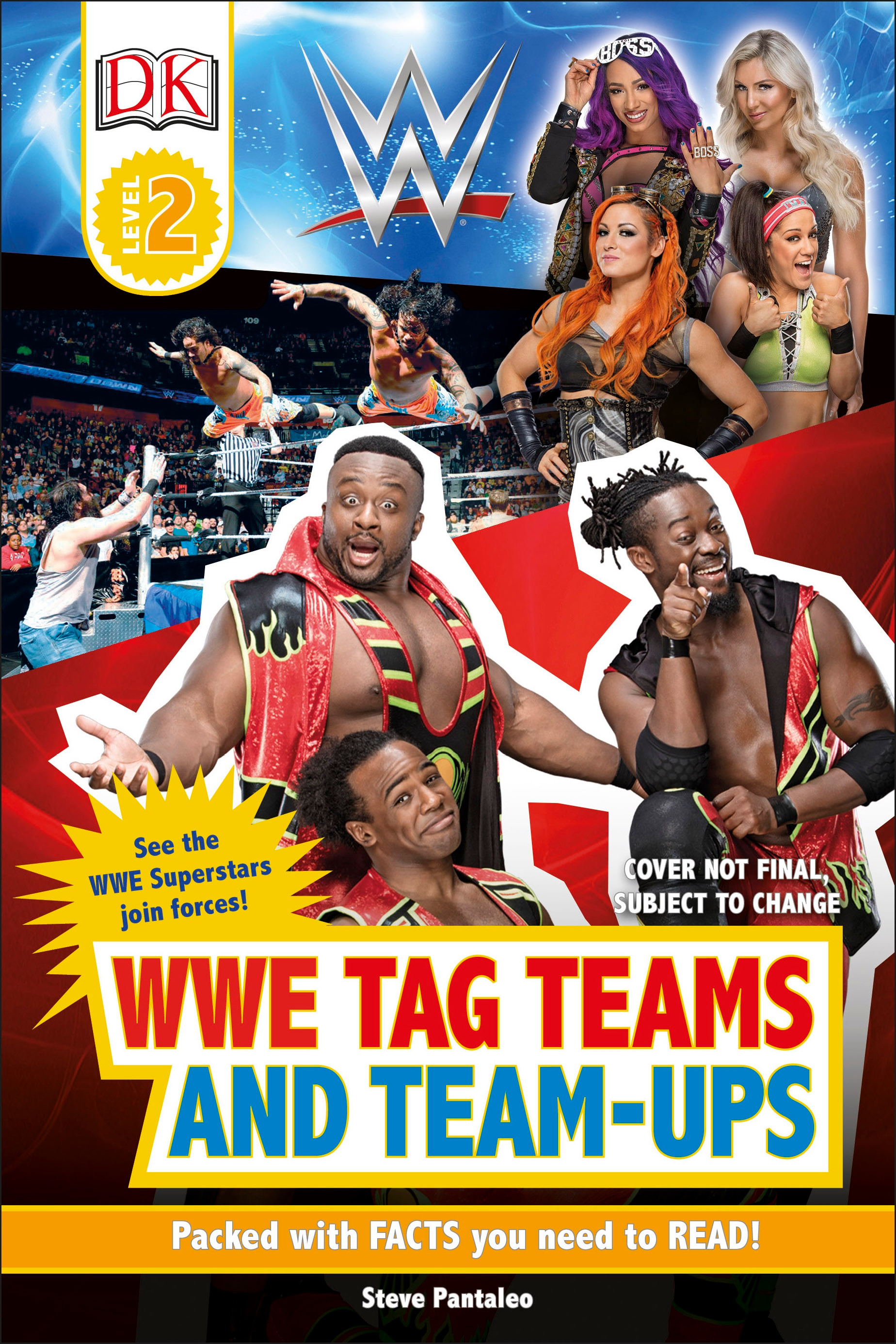 WWE Tag-Teams and Team-Ups by