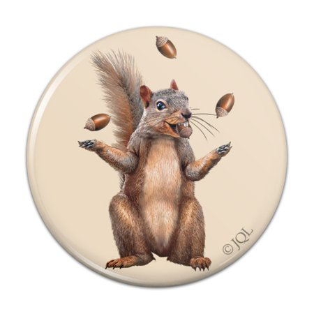 "Squirrel Juggling His Nuts Crazy Funny Pinback Button Pin Badge - 1"" Diameter"