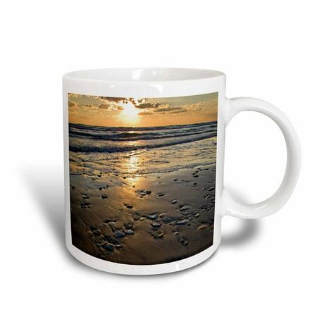 3dRose Beach seashells, Padre Island, Gulf of Mexico, Texas - US44 LDI0021 - Larry Ditto, Ceramic Mug, 11-ounce