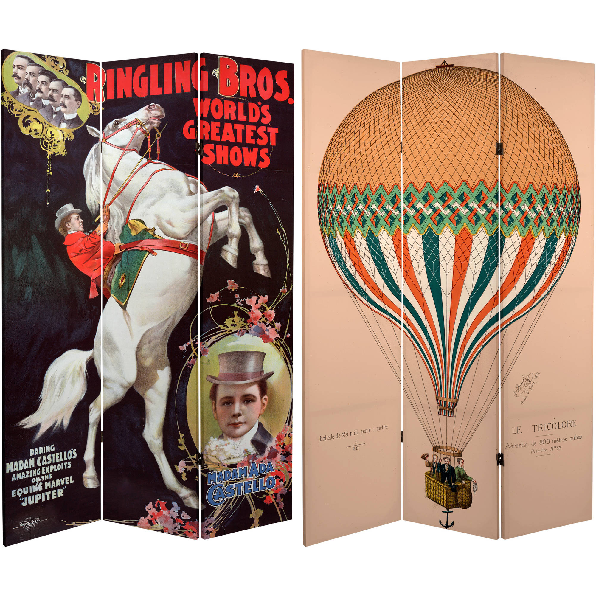 6' Tall Double Sided Circus Room Divider