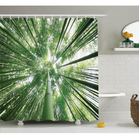 - Bamboo Decor Shower Curtain Set, Tropical Rain Forest Tall Bamboo Trees In Grove Exotic Asian Nature Zen Decor Style Image, Bathroom Accessories, 69W X 70L Inches, By Ambesonne