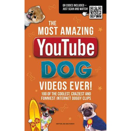 The Most Amazing Youtube Dog Videos Ever    120 Of The Coolest  Craziest And Funniest Internet Doggy Clips