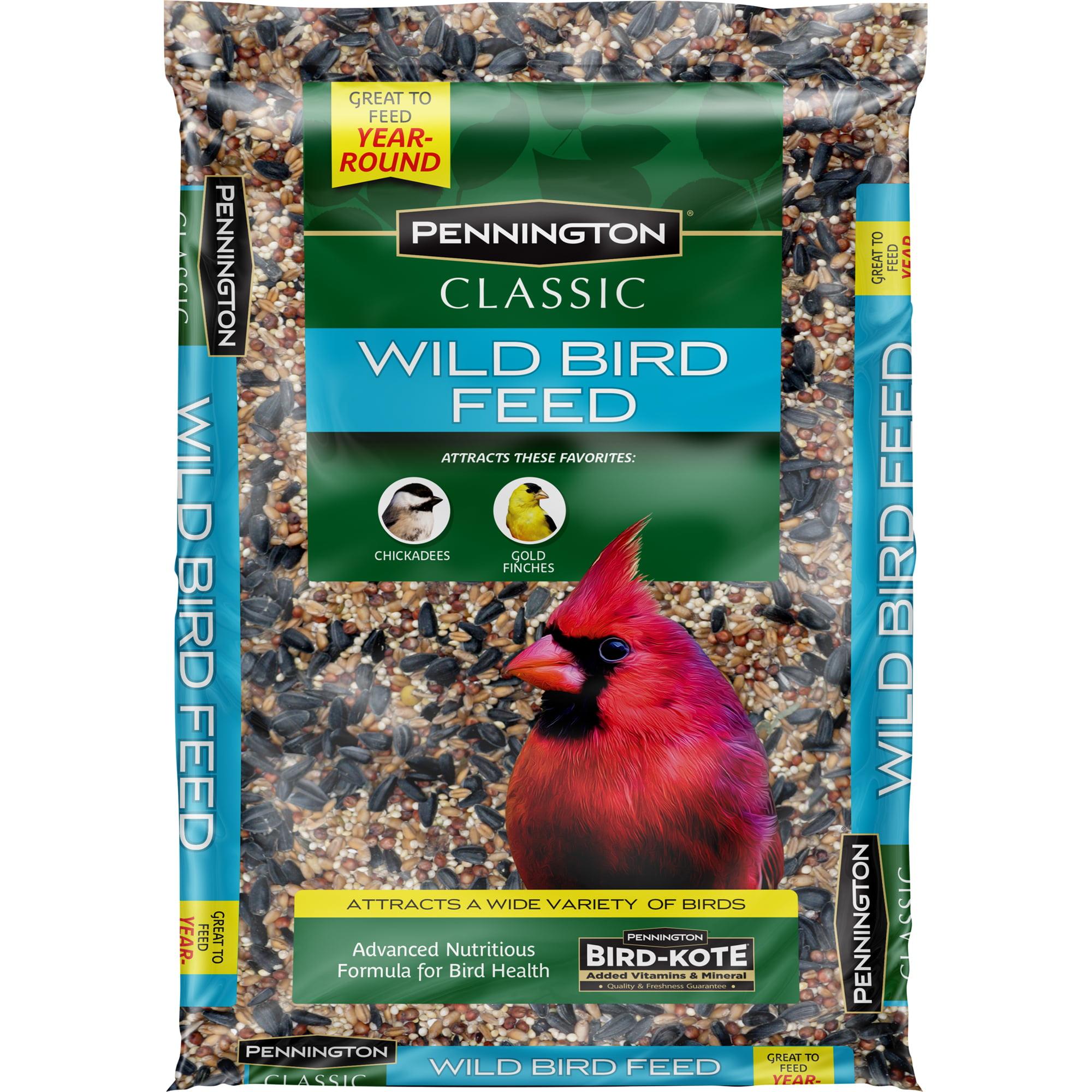 Bird food walmart pennington classic wild bird feed and seed 10 lbs forumfinder Gallery