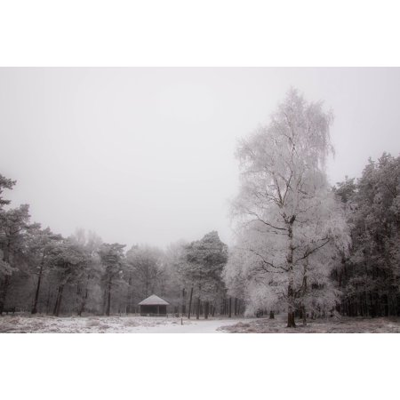 Framed Art for Your Wall Landscape Snow Nature Wooden Cabin Tree Forest 10x13 Frame ()