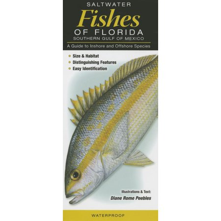 Saltwater Fishes of Florida-Southern Gulf of