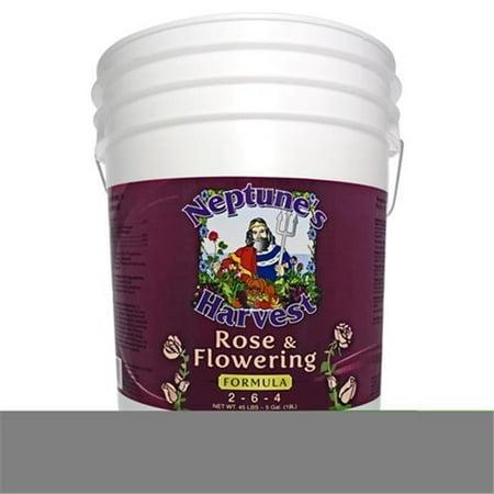 Edelstein Moss Rose - Neptunes Harvest 5 Gallon Red Label Pail Rose & Flowering Fertilizer