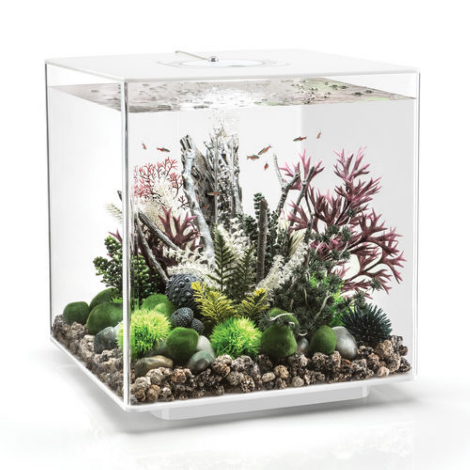 biOrb by Oase CUBE 60 Aquarium with MCR Light