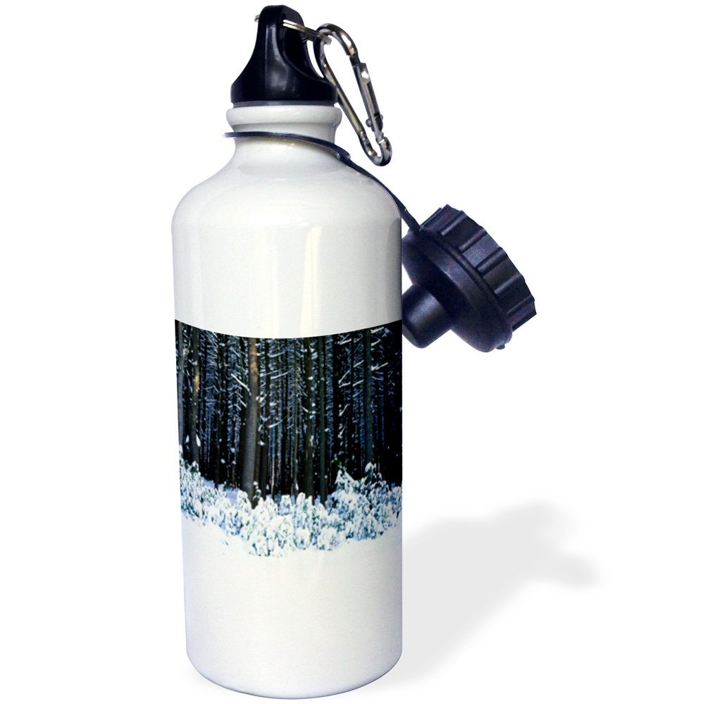 3dRose Winter In Pocono Mountains PennSylvania, Sports Water Bottle, 21oz by Supplier Generic