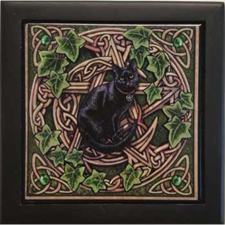 Fortune Telling Toy Tarot Card Box Storage Black Cat in Pentacle Garden Tile Satin Hinged - Store Tile Box