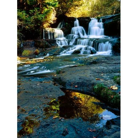 Scenic view of waterfall, Alsea Falls, South Fork Alsea River, Benton County, Central Coast Rang... Print Wall Art - Halloween Parties Central Coast