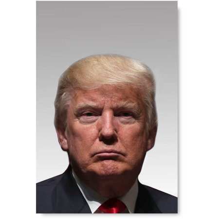 Awkward Styles Donald Trump Photo Poster Trump Fine Wall Art American President Portrait Classic Portrait Stylish Painting Ready to Hang Trump Digital Print Fine Art for Home Nifty Decor Ideas](Halloween Painting Ideas)