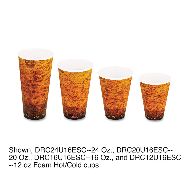 Dart Fusion Escape 20 Ounce Foam Hot/Cold Cups, 500ct