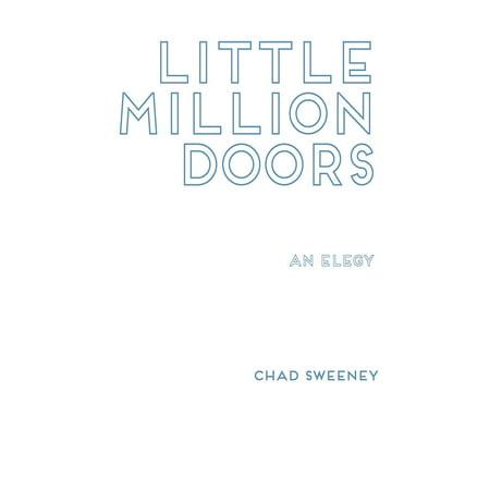 Little Million Doors (Mullion Doors)