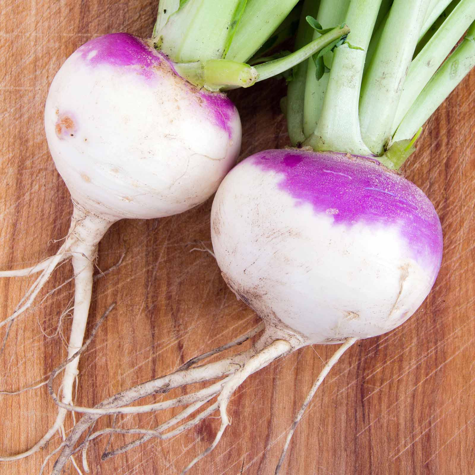 Rutabaga Seeds - American Purple Top: 1 Lb - Non-GMO Vegetable Garden & Micro Greens Seeds