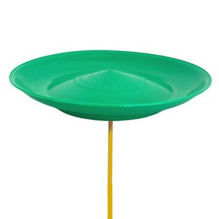 Cirque Du Soleil Spinning Plate (Green)