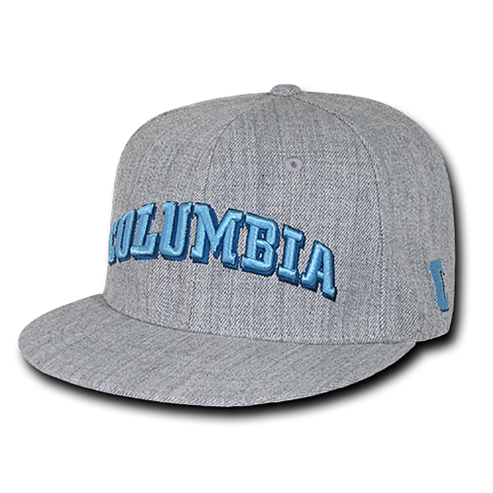 Columbia University Lions Game Day Fitted Hat (Gray)