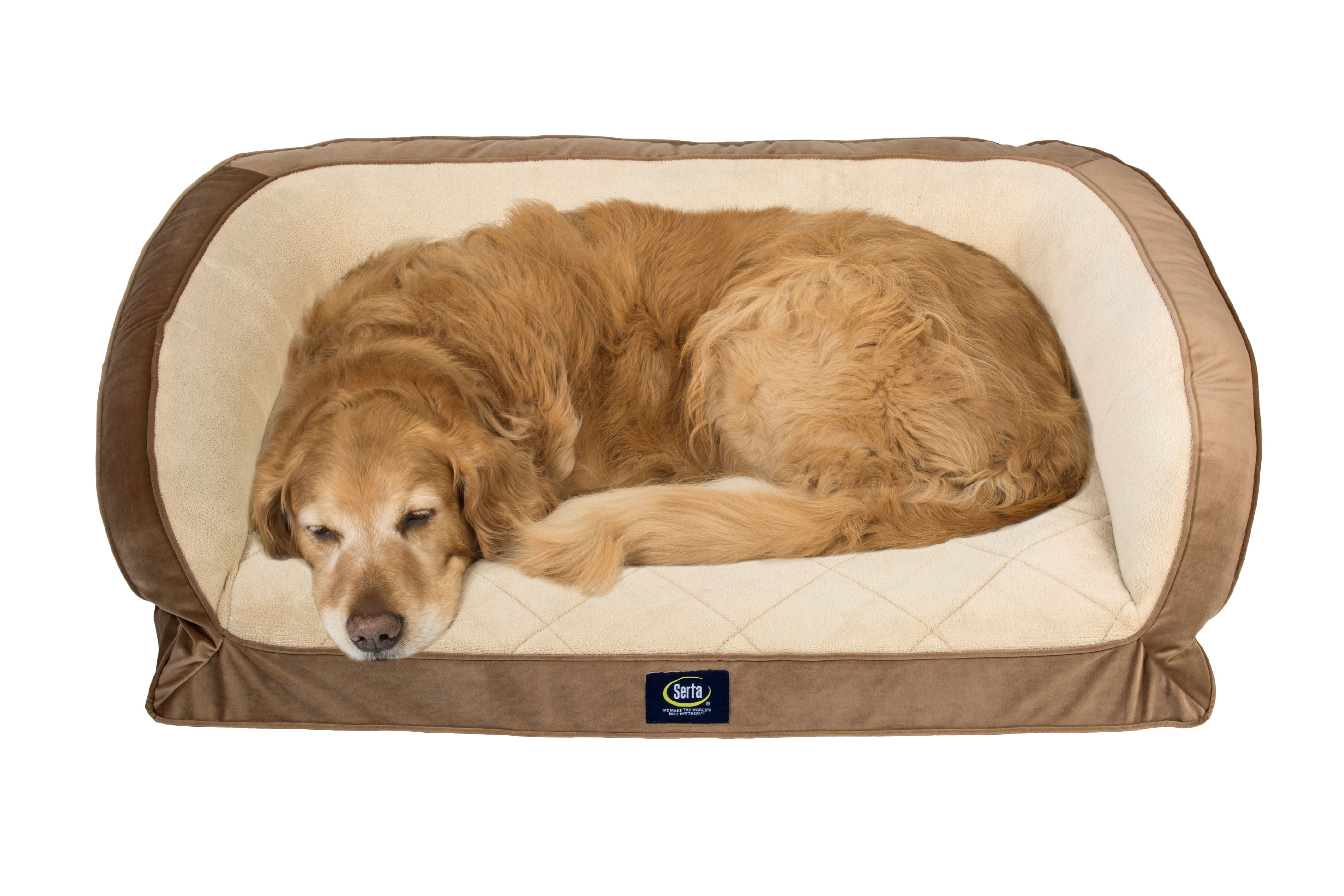 Beau Serta Orthopedic Gel Memory Foam Quilted Couch Pet Bed, Large, Color May  Vary