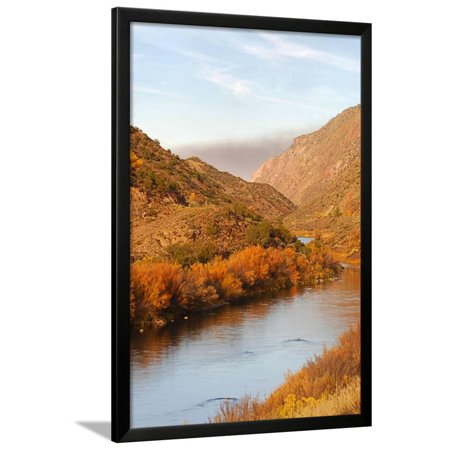 Toas in Fall Framed Print Wall Art By SD - Black Toga