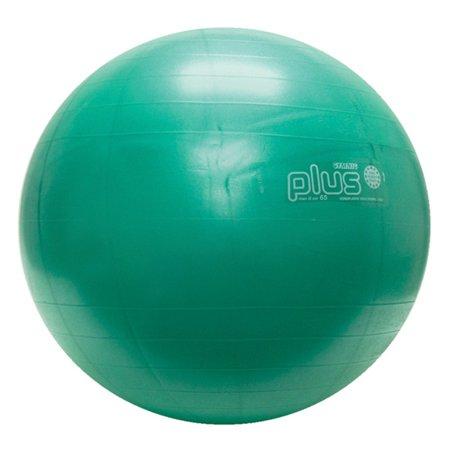 Physiogymnic Ball - PhysioGymnic molded vinyl inflatable ball, 65 cm (26