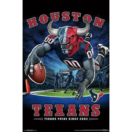 Houston Texans - End Zone (Warehouse Sale Houston)