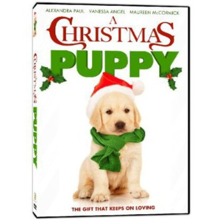 A Christmas Puppy (Widescreen)](A Halloween Puppy 2017 Trailer)