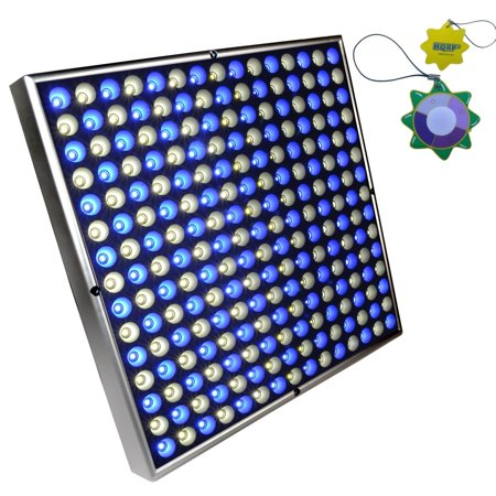HQRP High-Power 225 LED White & Blue Indoor Garden Hydroponic Plant Grow Light Panel / System / Lamp 45 Watt plus Hanging Kit + HQRP UV