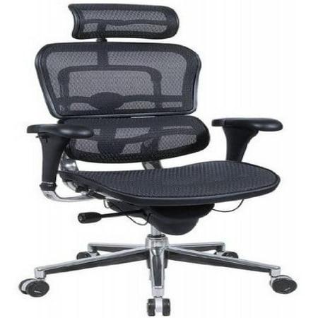 Ergohuman Executive Chair With Headrest