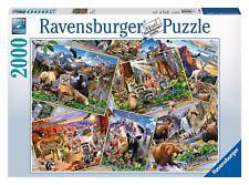 Ravensburger Postcard Parks Puzzle (2000-piece) by