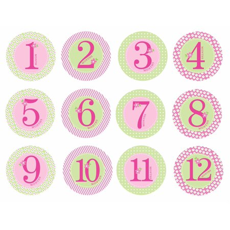 Pearhead First Year Monthly Milestone Belly Stickers, 1-12 Months, Pink (Sofia The First Stickers)