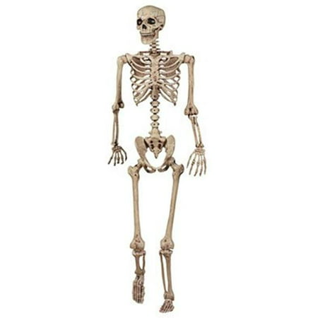 18965 5 ft. Pose N Stay Skeleton