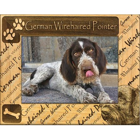 Giftworks Plus DBA0084 German Wirehaired Pointer, Alder Wood Frame, 5 x 7 In