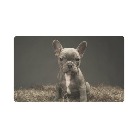 French Bulldog Door - MKHERT Baby French Bulldog Cute Puppy Doormat Rug Home Decor Floor Mat Bath Mat 30x18 inch