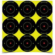 Birchwood Casey Shoot-N-C Targets: Bull's-Eye