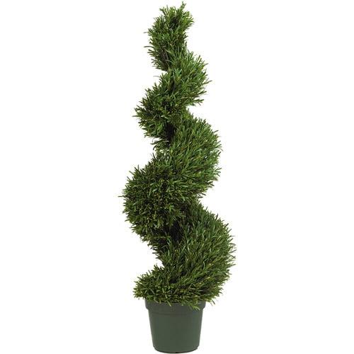 4' Rosemary Spiral Silk Tree