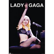 Lady Gaga - Domestic Poster