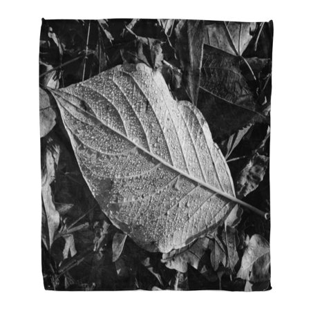 SIDONKU Throw Blanket Warm Cozy Print Flannel Forest Leaf Detail Black and White Tree Water Comfortable Soft for Bed Sofa and Couch 50x60 Inches