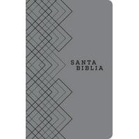 Santa Biblia Ntv, Edición Ágape (Sentipiel, Gris) (Other)