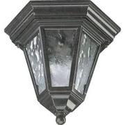 Quorum 1 Light Outdoor Flush Mount in Baltic Granite
