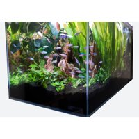 Crystal Aquarium by Lifegard Aquatics Low Iron Ultra Clear Glass 7.4 Gallons with Built in Side Filter