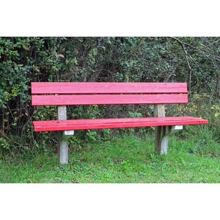 Framed Art for Your Wall Seat Sit Red Bank Rest Click Bench Nature Out 10x13