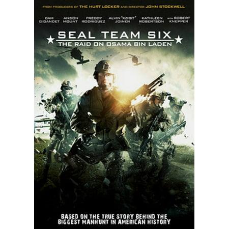 Seal Team Six: The Raid on Osama Bin Laden (DVD)