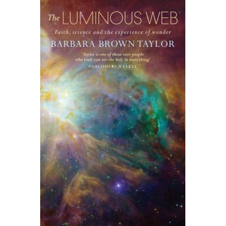 LUMINOUS WEB: WHERE FAITH AND SCIENCE MT (The Luminous Web Essays On Science And Religion)