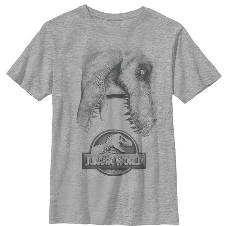 Jurassic World: Fallen Kingdom Boys' Jurassic World Fallen Kingdom T. Rex Bite T-Shirt](Boys Kingdom)