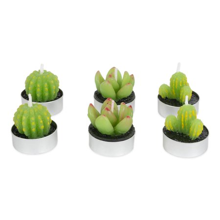 DII Decorative Succulent Cactus Tea light Candle with Paraffin Wax for Home Décor & Easy Gift Idea, Set of 6, 1.5x1.5