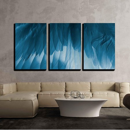 wall26 - 3 Piece Canvas Wall Art - the Bird'S Wing Close Up. X-Ray Effect. - Modern Home Decor Stretched and Framed Ready to Hang - 24