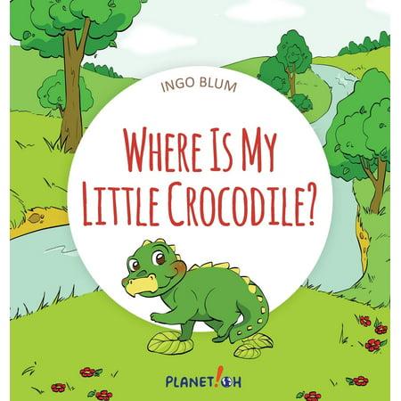 Where Is...?: Where Is My Little Crocodile?