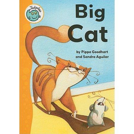 Big Cat - Bio Cat