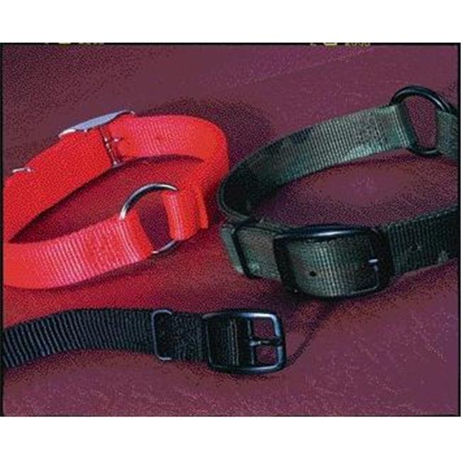 Hamilton Pet Company-Safe-rite Dog Collar With Tape- Orange 1x26 In