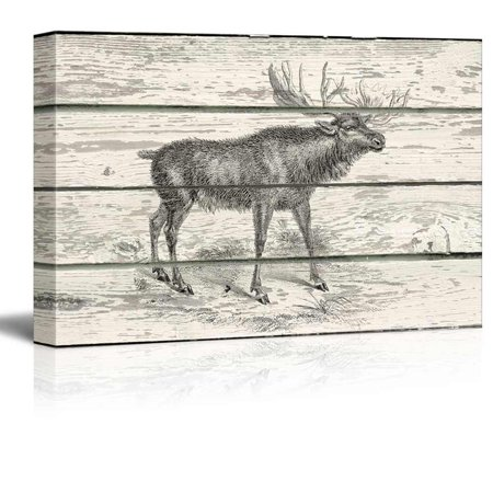 Wall26 - Illustration of a Brown Deer on a Rustic Wooden Background - Canvas Art Home Decor - 24x36 - Brown Deer