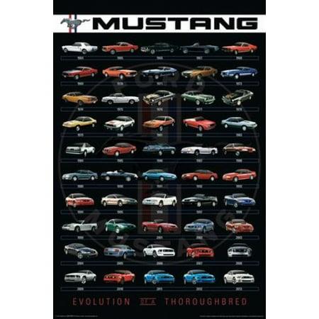 Mustang Evolution Poster - Ford - Mustang Evolution Poster Poster Print